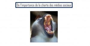 charte-medias-sociaux-amal-belkamel